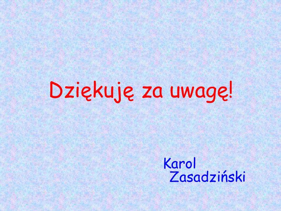 Dziękuję za uwagę! Karol Zasadziński