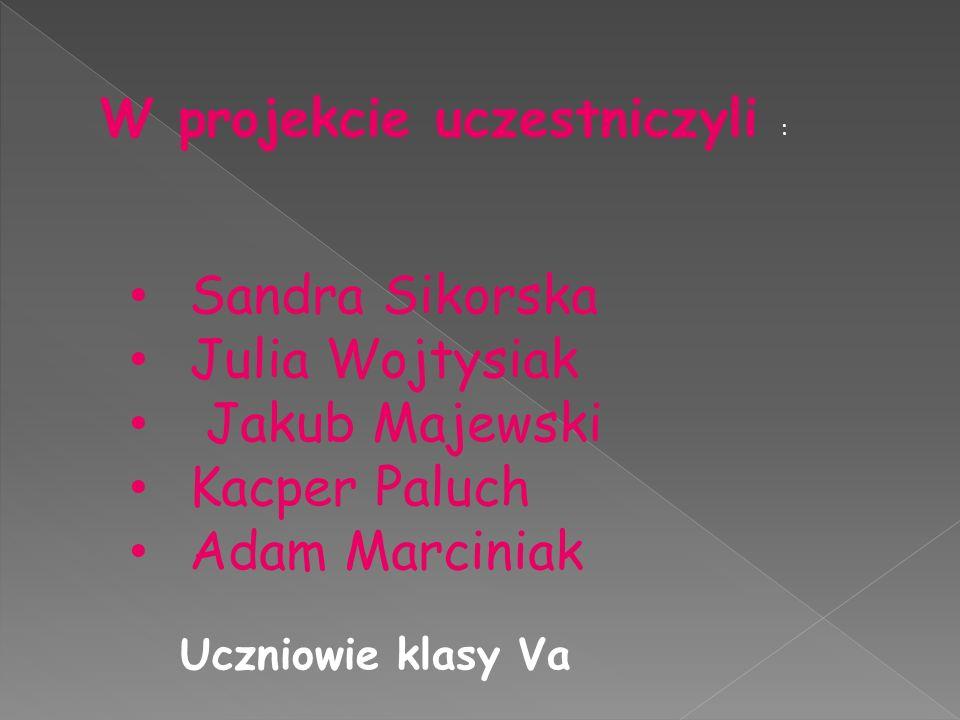 Sandra Sikorska Julia Wojtysiak Jakub Majewski Kacper Paluch Adam Marciniak W projekcie uczestniczyli : Uczniowie klasy Va