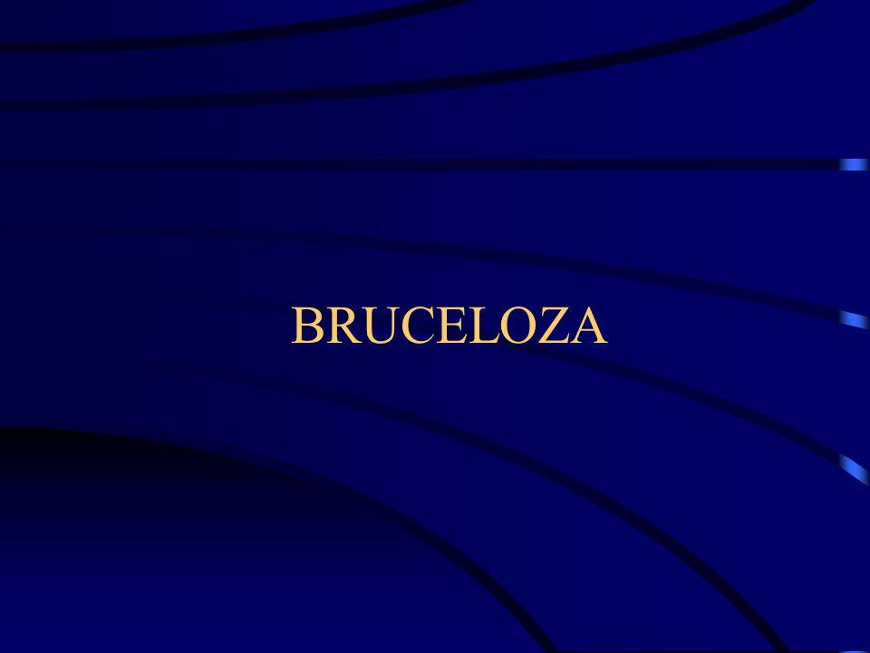 Rodzaj Brucella gatunki –B.abortus –B. melitensis –B.