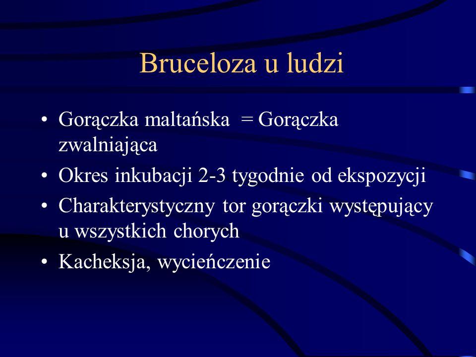 Bruceloza u ludzi Gorączka maltańska = Gorączka zwalniająca Okres inkubacji 2-3 tygodnie od ekspozycji Charakterystyczny tor gorączki występujący u ws
