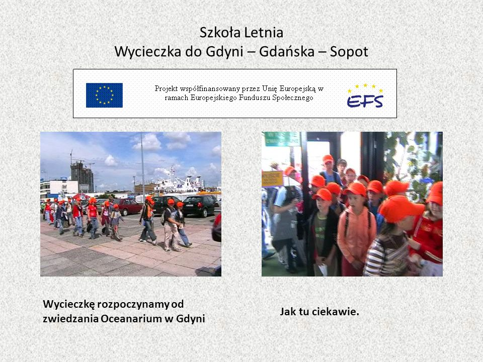 Szkoła Letnia Wycieczka do Gdyni – Gdańska – Sopot Wycieczkę rozpoczynamy od zwiedzania Oceanarium w Gdyni Jak tu ciekawie.