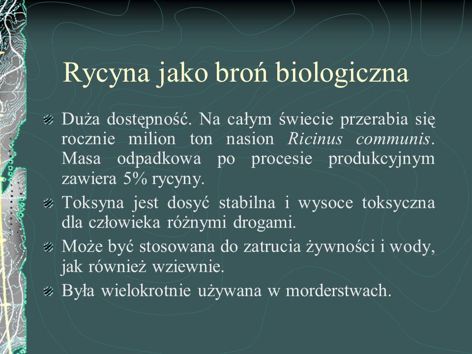 Rycyna jako broń biologiczna Duża dostępność. Na całym świecie przerabia się rocznie milion ton nasion Ricinus communis. Masa odpadkowa po procesie pr