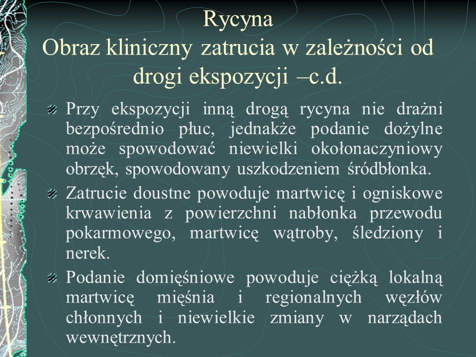 Rycyna Obraz kliniczny zatrucia w zależności od drogi ekspozycji –c.d. Przy ekspozycji inną drogą rycyna nie drażni bezpośrednio płuc, jednakże podani