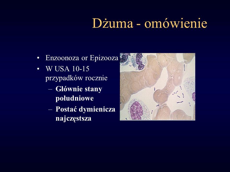 Dżuma - omówienie Enzoonoza or Epizooza W USA 10-15 przypadków rocznie –Głównie stany południowe –Postać dymienicza najczęstsza