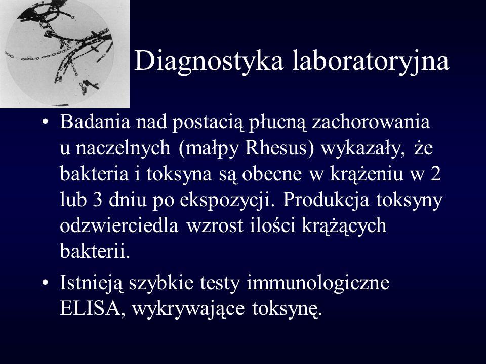 Diagnostyka laboratoryjna Badania nad postacią płucną zachorowania u naczelnych (małpy Rhesus) wykazały, że bakteria i toksyna są obecne w krążeniu w
