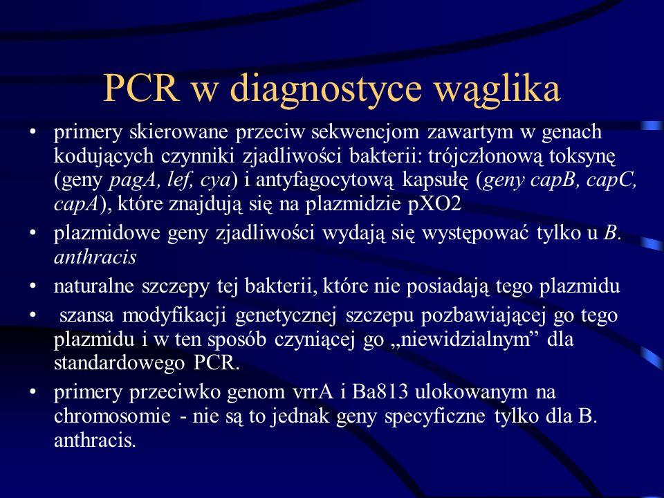 PCR w diagnostyce wąglika primery skierowane przeciw sekwencjom zawartym w genach kodujących czynniki zjadliwości bakterii: trójczłonową toksynę (geny