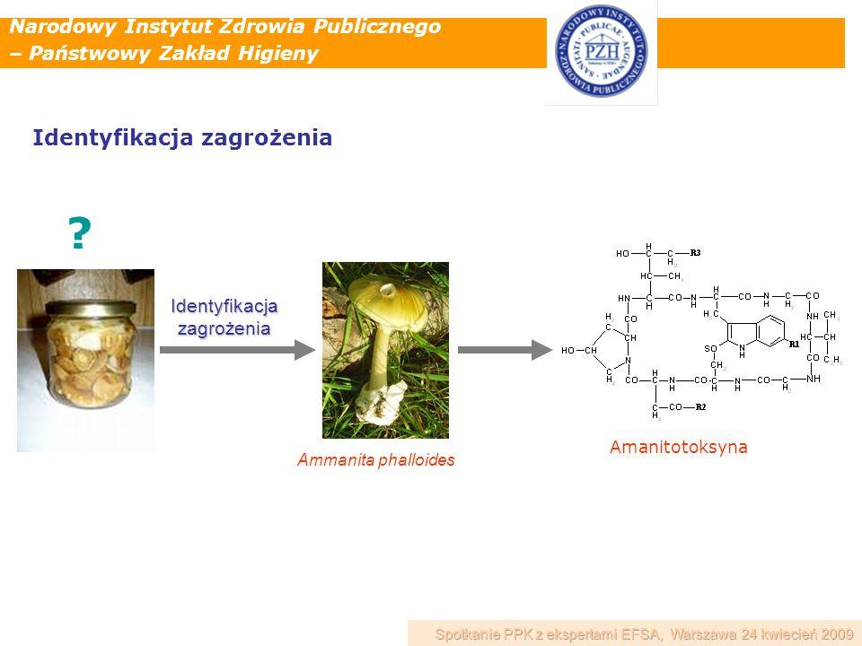 Narodowy Instytut Zdrowia Publicznego – Państwowy Zakład Higieny Ammanita phalloides ? Amanitotoksyna Identyfikacjazagrożenia Identyfikacja zagrożenia