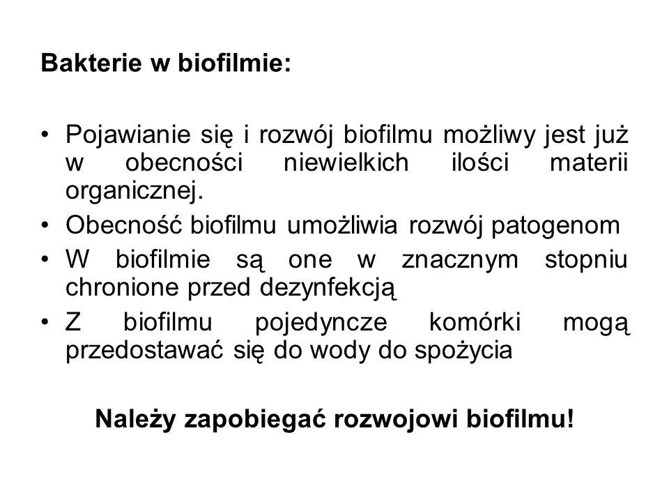 Bakterie w biofilmie: Pojawianie się i rozwój biofilmu możliwy jest już w obecności niewielkich ilości materii organicznej. Obecność biofilmu umożliwi