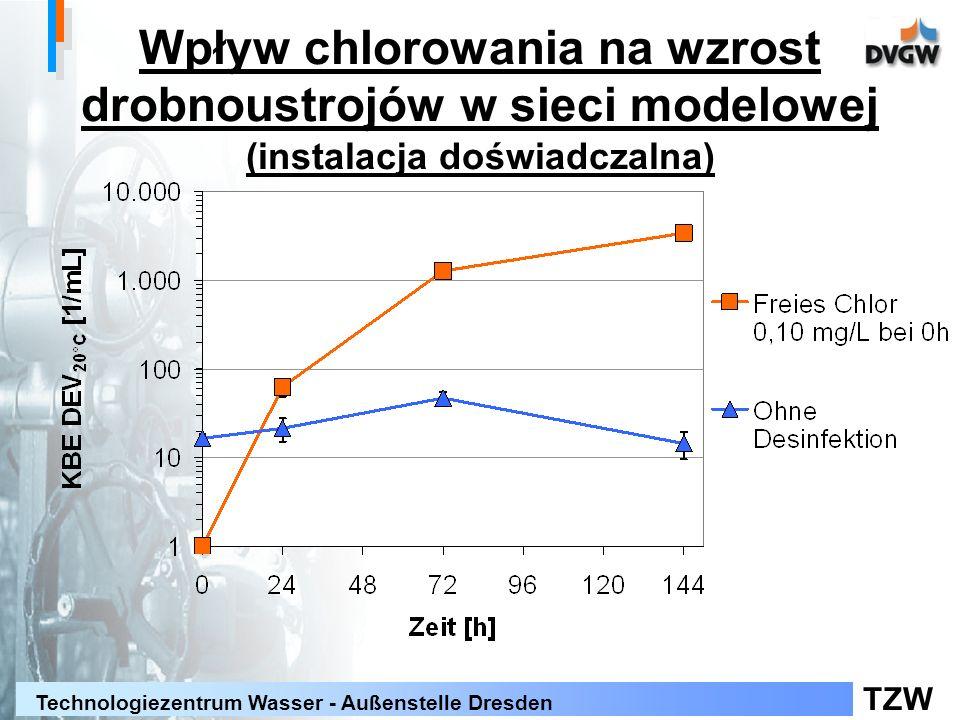 TZW Technologiezentrum Wasser - Außenstelle Dresden Wpływ chlorowania na wzrost drobnoustrojów w sieci modelowej (instalacja doświadczalna)