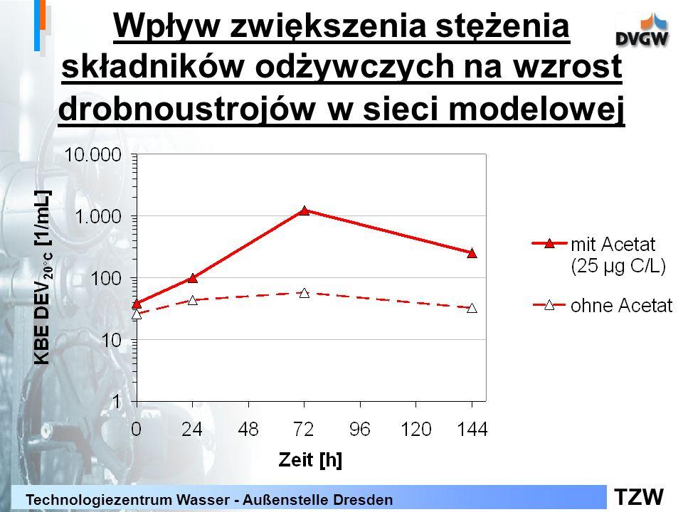 TZW Technologiezentrum Wasser - Außenstelle Dresden Wpływ zwiększenia stężenia składników odżywczych na wzrost drobnoustrojów w sieci modelowej