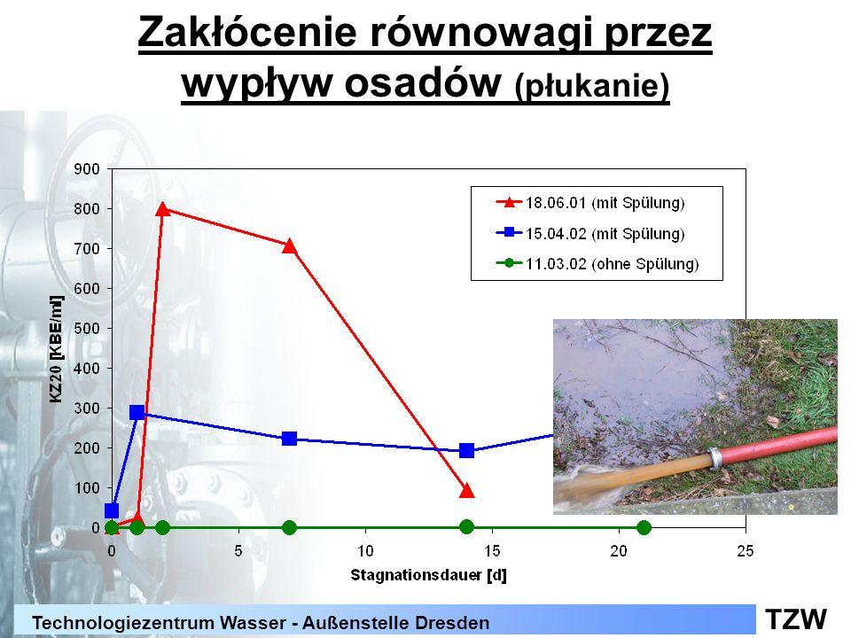 TZW Technologiezentrum Wasser - Außenstelle Dresden Zakłócenie równowagi przez wypływ osadów (płukanie)