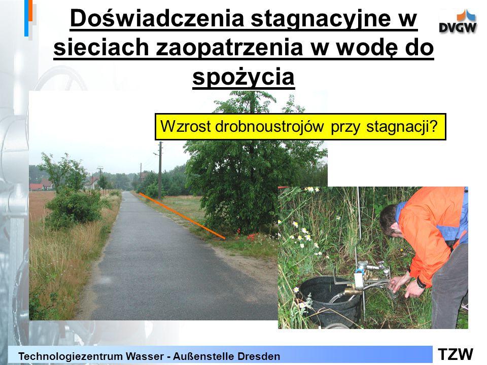 TZW Technologiezentrum Wasser - Außenstelle Dresden Doświadczenia stagnacyjne w sieciach zaopatrzenia w wodę do spożycia Wzrost drobnoustrojów przy st