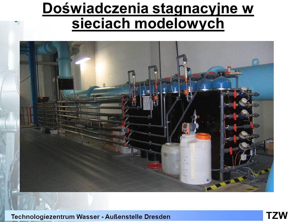 TZW Technologiezentrum Wasser - Außenstelle Dresden Wzrost bakterii grupy Coli w wodzie (doświadczenia na stan wzrostu drobnoustrojów) monokultura Enterobacter asburiae + naturalna biocenoza
