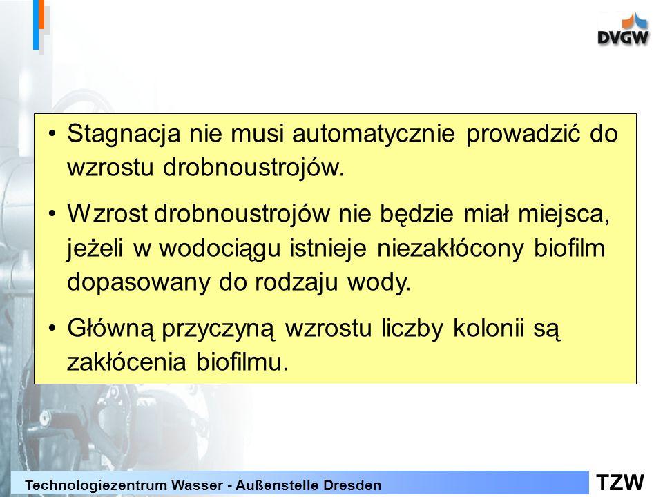 TZW Technologiezentrum Wasser - Außenstelle Dresden Zmiana wzrostu drobnoustrojów zależnie od czasu eksploatacji: Rozwój biofilmu Sieć modelowa DN 50 stal szlachetna Doświadczenia stagnacyjne