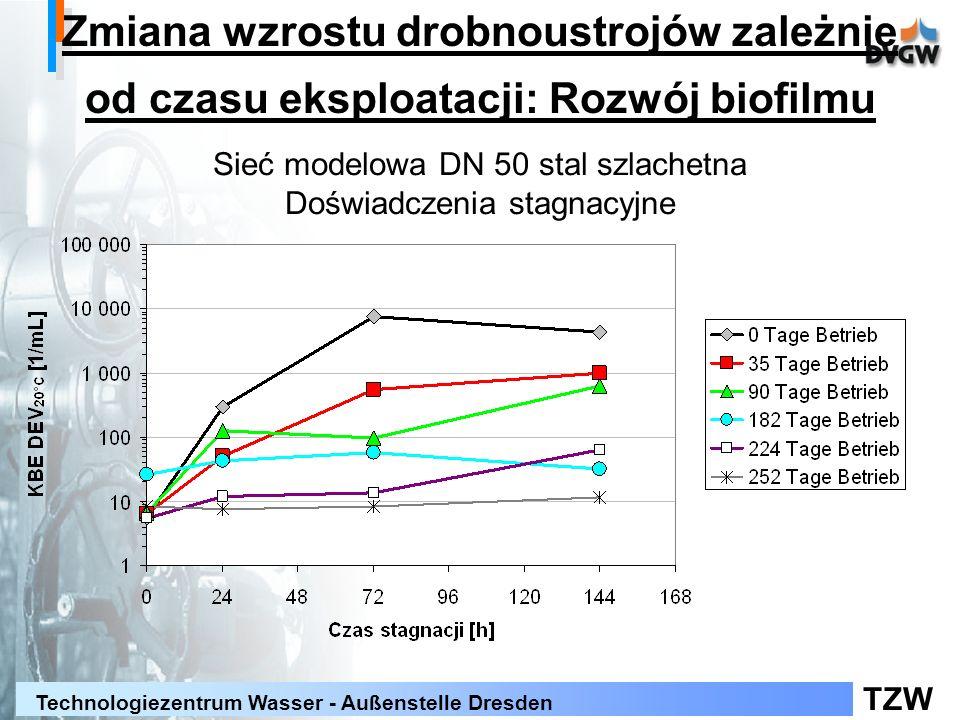 TZW Technologiezentrum Wasser - Außenstelle Dresden Zmiana wzrostu drobnoustrojów zależnie od czasu eksploatacji: Rozwój biofilmu Sieć modelowa DN 50