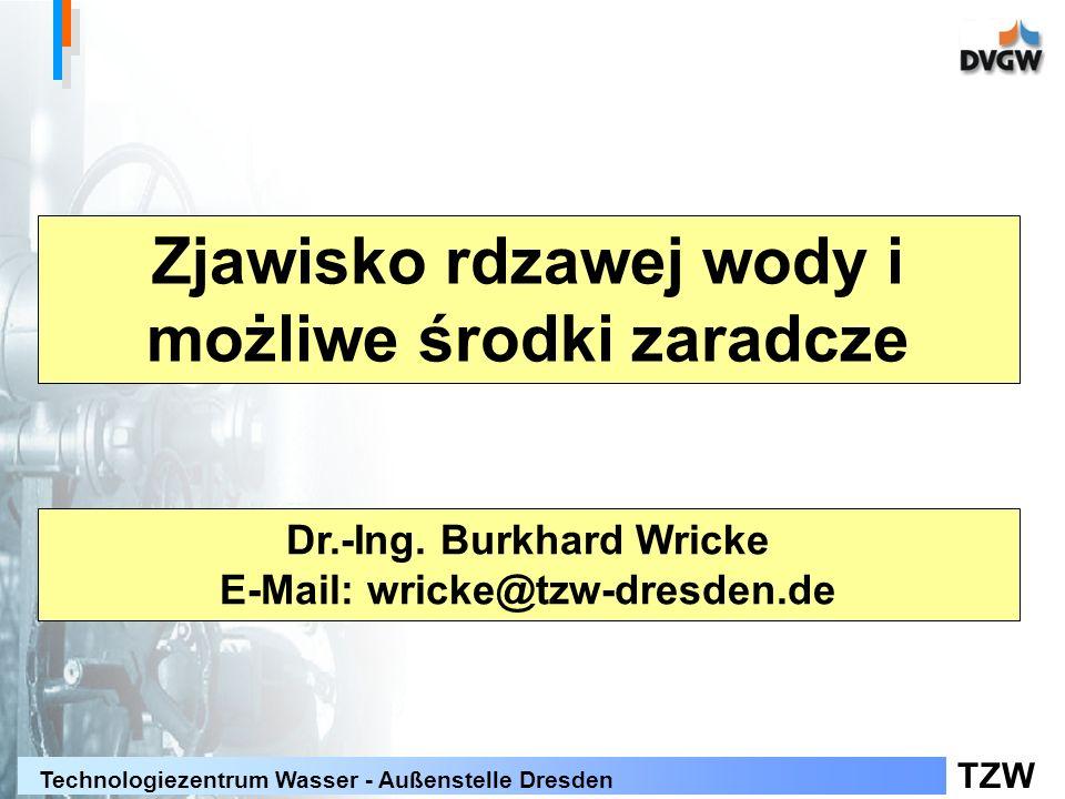 TZW Technologiezentrum Wasser - Außenstelle Dresden Zjawisko rdzawej wody i możliwe środki zaradcze Dr.-Ing.