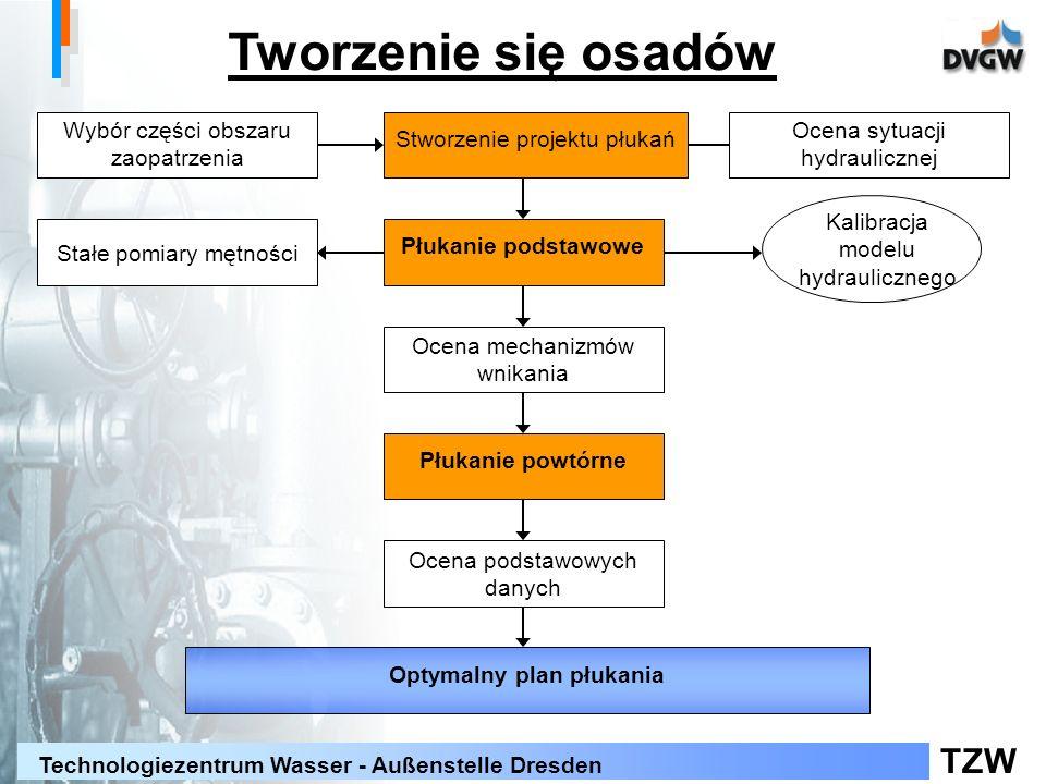 TZW Technologiezentrum Wasser - Außenstelle Dresden Tworzenie się osadów Kalibracja modelu hydraulicznego Wybór części obszaru zaopatrzenia Optymalny plan płukania Płukanie podstawowe Ocena sytuacji hydraulicznej Stworzenie projektu płukań Stałe pomiary mętności Ocena podstawowych danych Płukanie powtórne Ocena mechanizmów wnikania