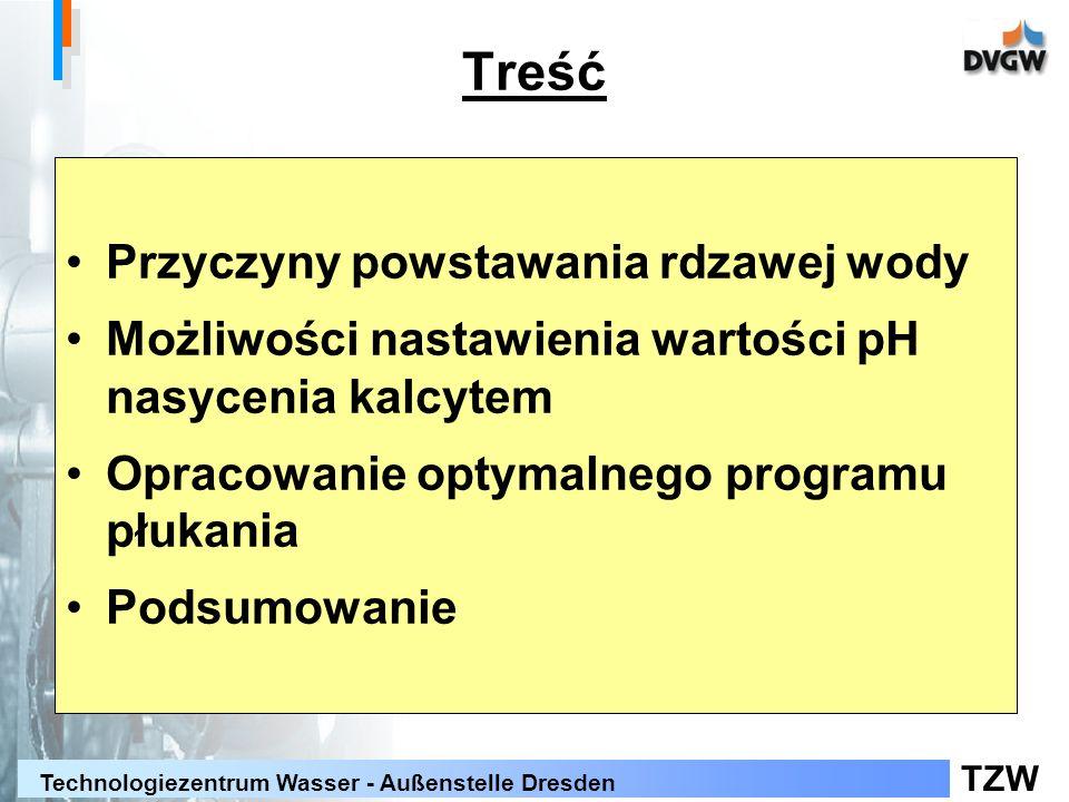 TZW Technologiezentrum Wasser - Außenstelle Dresden Treść Przyczyny powstawania rdzawej wody Możliwości nastawienia wartości pH nasycenia kalcytem Opracowanie optymalnego programu płukania Podsumowanie