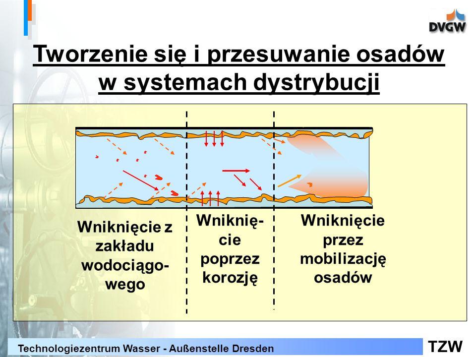TZW Technologiezentrum Wasser - Außenstelle Dresden Tworzenie się i przesuwanie osadów w systemach dystrybucji Wniknięcie z zakładu wodociągo- wego Wniknię- cie poprzez korozję Wniknięcie przez mobilizację osadów