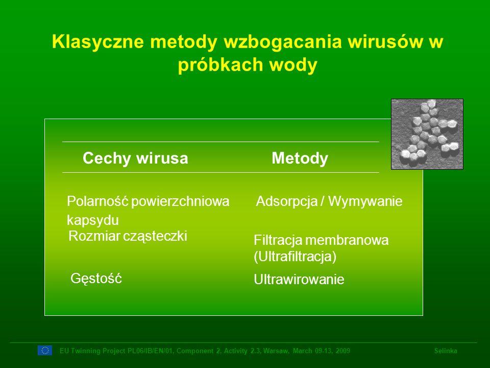 Klasyczne metody wzbogacania wirusów w próbkach wody Cechy wirusaMetody Polarność powierzchniowa kapsydu Adsorpcja / Wymywanie Rozmiar cząsteczki Filt