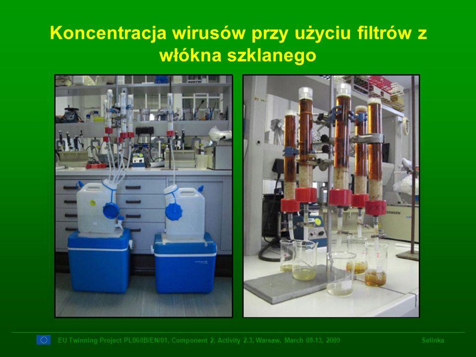 Koncentracja wirusów przy użyciu filtrów z włókna szklanego