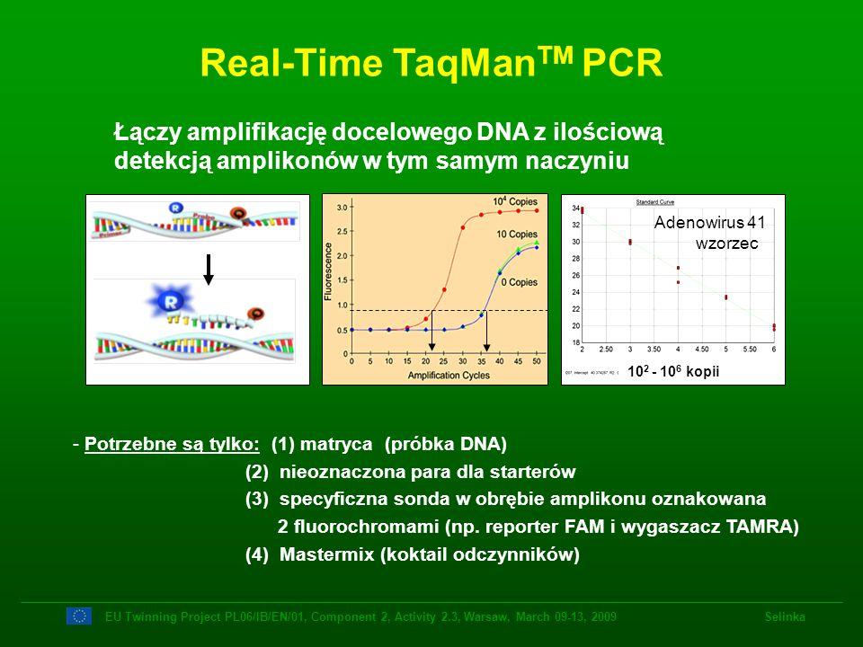 Real-Time TaqMan TM PCR - Potrzebne są tylko: (1) matryca (próbka DNA) (2) nieoznaczona para dla starterów (3) specyficzna sonda w obrębie amplikonu o