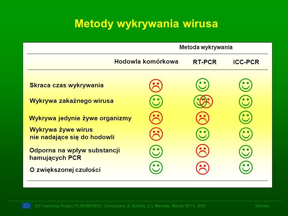Metody wykrywania wirusa O zwiększonej czułości Wykrywa żywe wirus nie nadające się do hodowli Wykrywa jedynie żywe organizmy Wykrywa zakaźnego wirusa