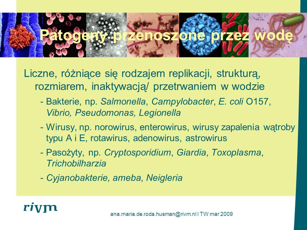 ana.maria.de.roda.husman@rivm.nl I TW mar 2009 Redukcja patogenów poprzez oczyszczanie ścieków Van den Berg et al.