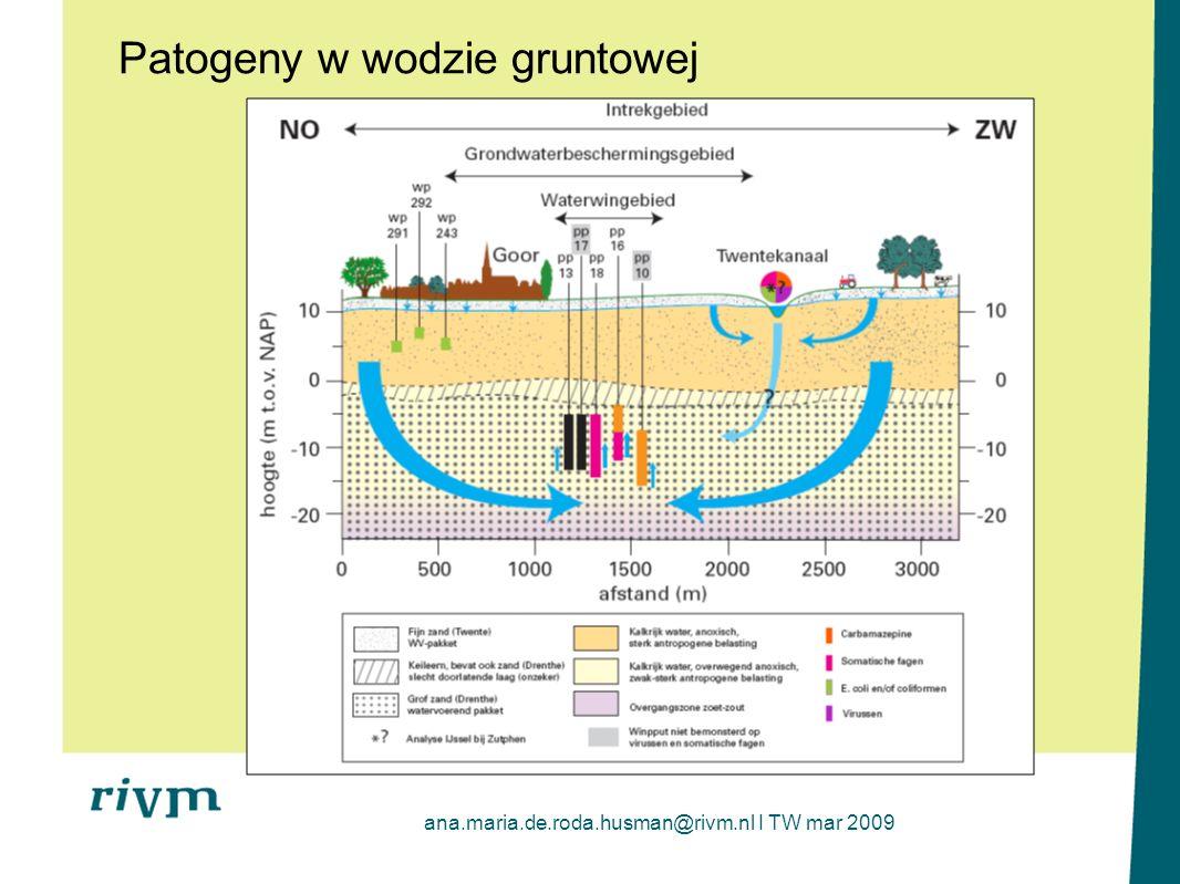 ana.maria.de.roda.husman@rivm.nl I TW mar 2009 Patogeny w wodzie gruntowej