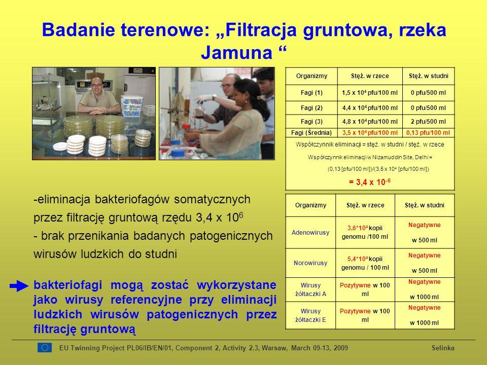 OrganizmyStęż. w rzeceStęż. w studni Fagi (1)1,5 x 10 4 pfu/100 ml0 pfu/500 ml Fagi (2)4,4 x 10 4 pfu/100 ml0 pfu/500 ml Fagi (3)4,8 x 10 4 pfu/100 ml