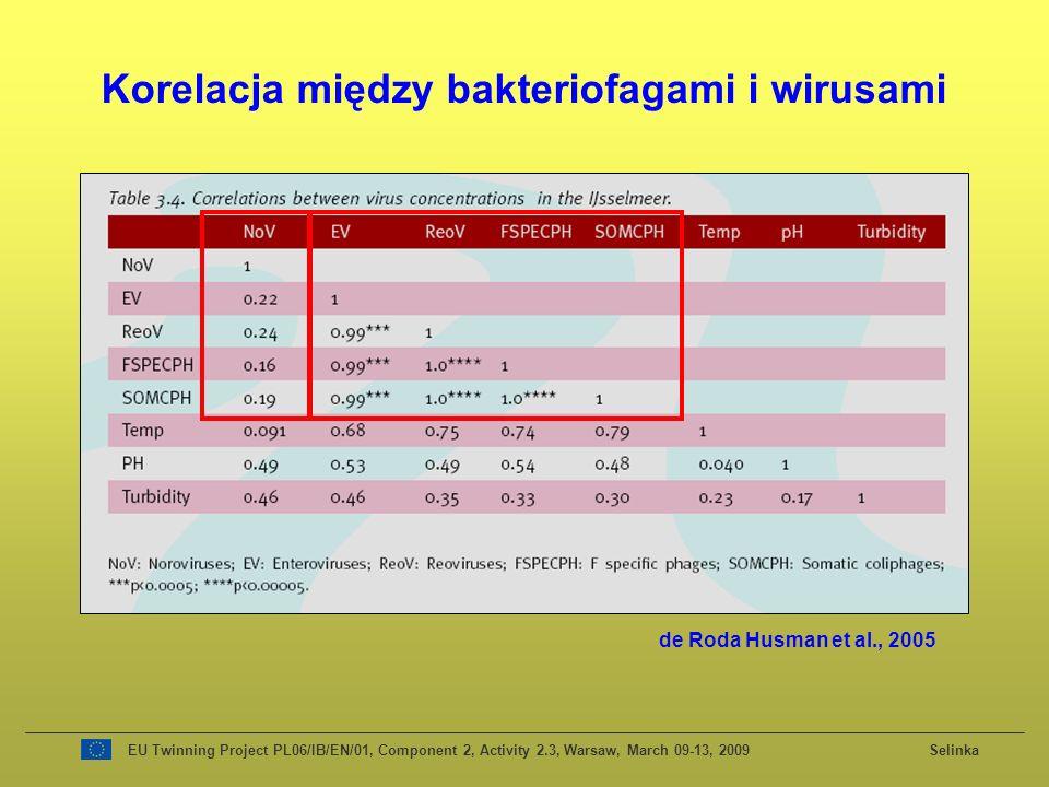 Korelacja między bakteriofagami i wirusami de Roda Husman et al., 2005 EU Twinning Project PL06/IB/EN/01, Component 2, Activity 2.3, Warsaw, March 09-13, 2009 Selinka