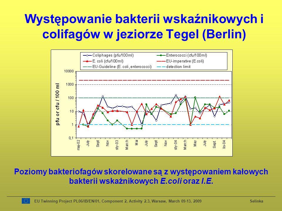 Występowanie bakterii wskaźnikowych i colifagów w jeziorze Tegel (Berlin) Poziomy bakteriofagów skorelowane są z występowaniem kałowych bakterii wskaźnikowych E.coli oraz I.E.