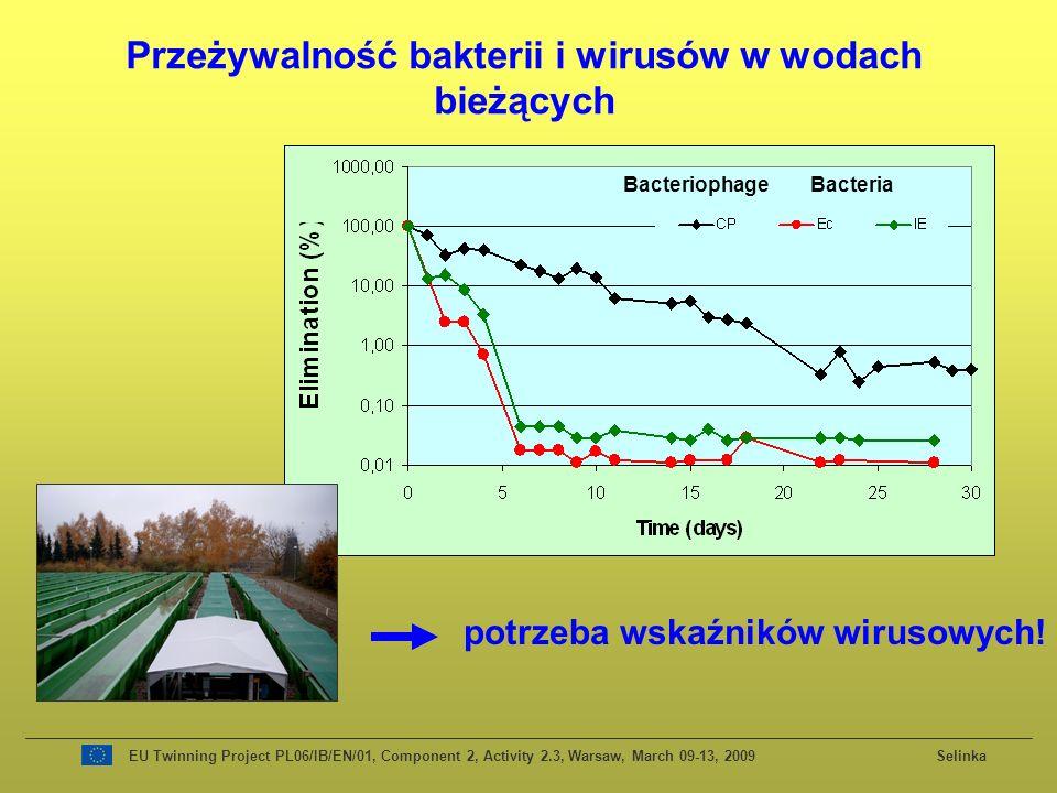 Przeżywalność bakterii i wirusów w wodach bieżących BacteriophageBacteria EU Twinning Project PL06/IB/EN/01, Component 2, Activity 2.3, Warsaw, March 09-13, 2009 Selinka potrzeba wskaźników wirusowych!