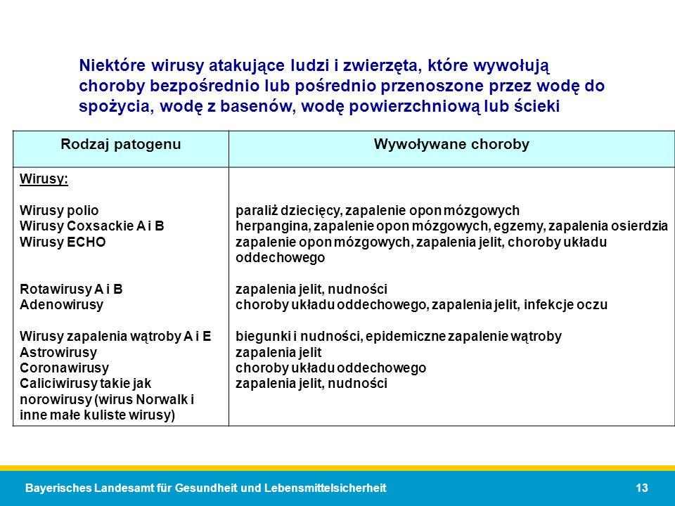 Bayerisches Landesamt für Gesundheit und Lebensmittelsicherheit 13 Niektóre wirusy atakujące ludzi i zwierzęta, które wywołują choroby bezpośrednio lub pośrednio przenoszone przez wodę do spożycia, wodę z basenów, wodę powierzchniową lub ścieki Rodzaj patogenuWywoływane choroby Wirusy: Wirusy polio Wirusy Coxsackie A i B Wirusy ECHO Rotawirusy A i B Adenowirusy Wirusy zapalenia wątroby A i E Astrowirusy Coronawirusy Caliciwirusy takie jak norowirusy (wirus Norwalk i inne małe kuliste wirusy) paraliż dziecięcy, zapalenie opon mózgowych herpangina, zapalenie opon mózgowych, egzemy, zapalenia osierdzia zapalenie opon mózgowych, zapalenia jelit, choroby układu oddechowego zapalenia jelit, nudności choroby układu oddechowego, zapalenia jelit, infekcje oczu biegunki i nudności, epidemiczne zapalenie wątroby zapalenia jelit choroby układu oddechowego zapalenia jelit, nudności