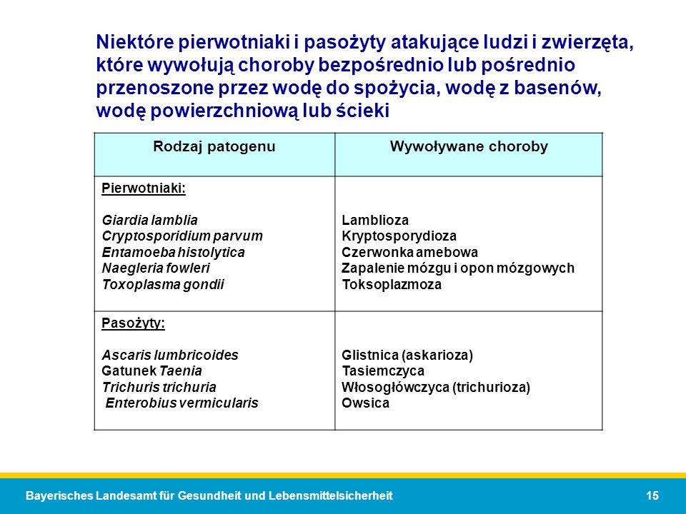 Bayerisches Landesamt für Gesundheit und Lebensmittelsicherheit 15 Niektóre pierwotniaki i pasożyty atakujące ludzi i zwierzęta, które wywołują choroby bezpośrednio lub pośrednio przenoszone przez wodę do spożycia, wodę z basenów, wodę powierzchniową lub ścieki Rodzaj patogenuWywoływane choroby Pierwotniaki: Giardia lamblia Cryptosporidium parvum Entamoeba histolytica Naegleria fowleri Toxoplasma gondii Lamblioza Kryptosporydioza Czerwonka amebowa Zapalenie mózgu i opon mózgowych Toksoplazmoza Pasożyty: Ascaris lumbricoides Gatunek Taenia Trichuris trichuria Enterobius vermicularis Glistnica (askarioza) Tasiemczyca Włosogłówczyca (trichurioza) Owsica