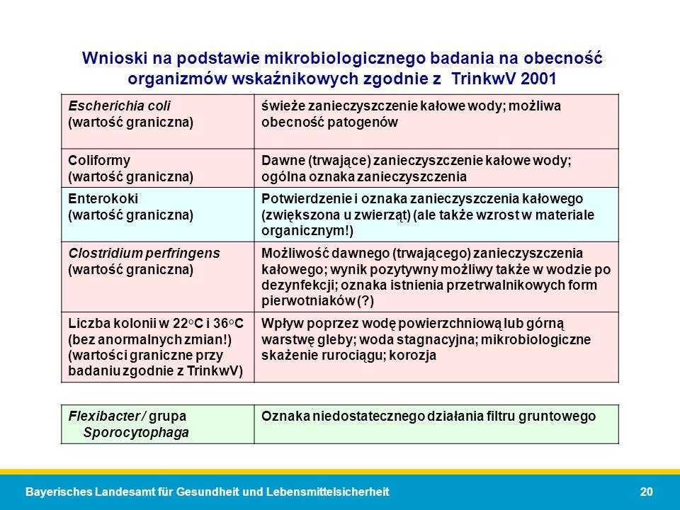 Bayerisches Landesamt für Gesundheit und Lebensmittelsicherheit 20 Wnioski na podstawie mikrobiologicznego badania na obecność organizmów wskaźnikowych zgodnie z TrinkwV 2001 Escherichia coli (wartość graniczna) świeże zanieczyszczenie kałowe wody; możliwa obecność patogenów Coliformy (wartość graniczna) Dawne (trwające) zanieczyszczenie kałowe wody; ogólna oznaka zanieczyszczenia Enterokoki (wartość graniczna) Potwierdzenie i oznaka zanieczyszczenia kałowego (zwiększona u zwierząt) (ale także wzrost w materiale organicznym!) Clostridium perfringens (wartość graniczna) Możliwość dawnego (trwającego) zanieczyszczenia kałowego; wynik pozytywny możliwy także w wodzie po dezynfekcji; oznaka istnienia przetrwalnikowych form pierwotniaków (?) Liczba kolonii w 22°C i 36°C (bez anormalnych zmian!) (wartości graniczne przy badaniu zgodnie z TrinkwV) Wpływ poprzez wodę powierzchniową lub górną warstwę gleby; woda stagnacyjna; mikrobiologiczne skażenie rurociągu; korozja Flexibacter / grupa Sporocytophaga Oznaka niedostatecznego działania filtru gruntowego