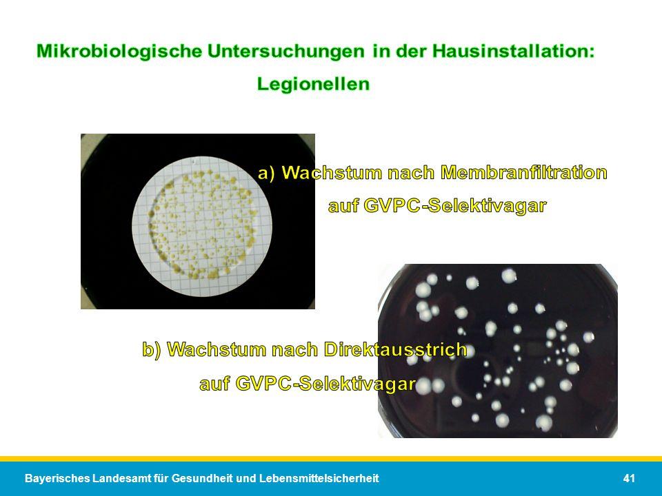 Bayerisches Landesamt für Gesundheit und Lebensmittelsicherheit 41