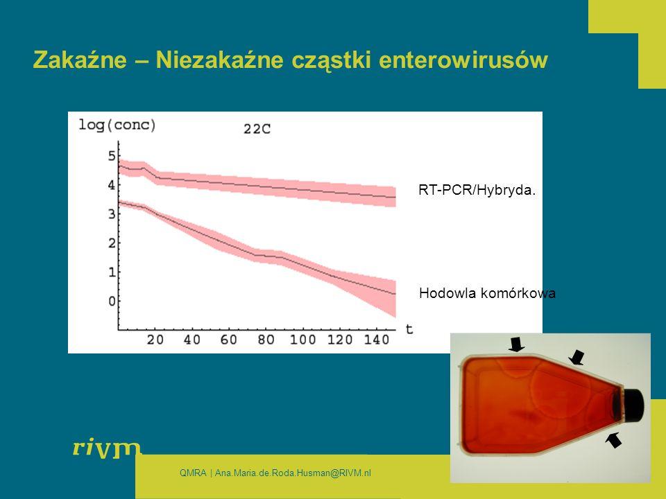 QMRA | Ana.Maria.de.Roda.Husman@RIVM.nl Zakaźne – Niezakaźne cząstki enterowirusów RT-PCR/Hybryda.