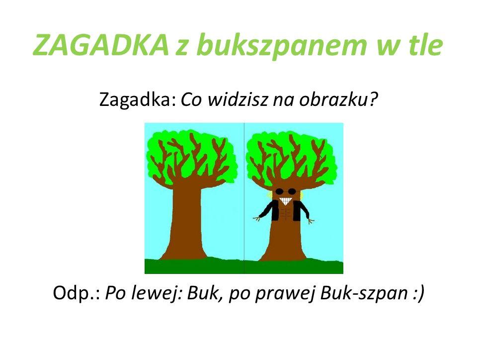 ZAGADKA z bukszpanem w tle Zagadka: Co widzisz na obrazku? Odp.: Po lewej: Buk, po prawej Buk-szpan :)