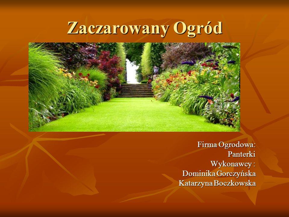 Zaczarowany Ogród Firma Ogrodowa: Panterki Wykonawcy : Dominika Gorczyńska Katarzyna Boczkowska