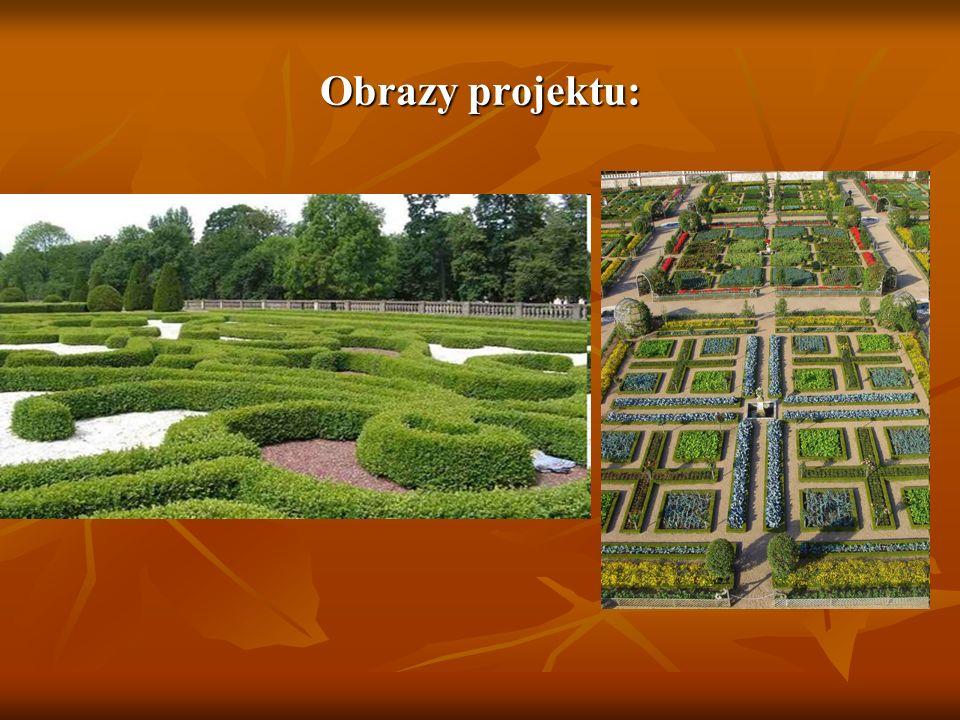 Kosztorys ogrodu: Roślinność : Roślinność : - Tulipany = x100 sztuk = x1szt.