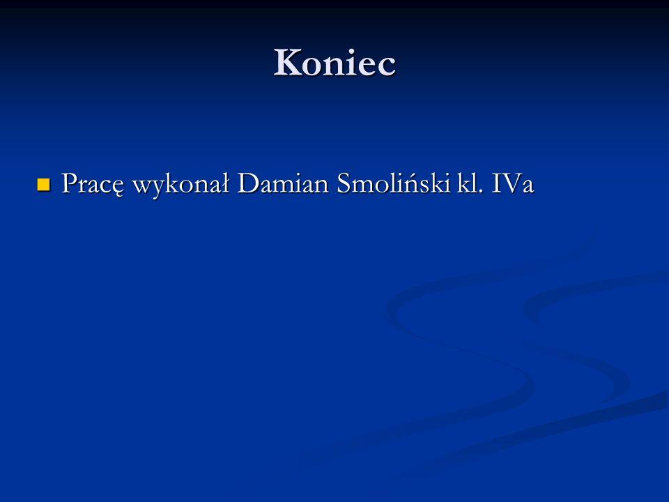 Koniec Pracę wykonał Damian Smoliński kl. IVa Pracę wykonał Damian Smoliński kl. IVa