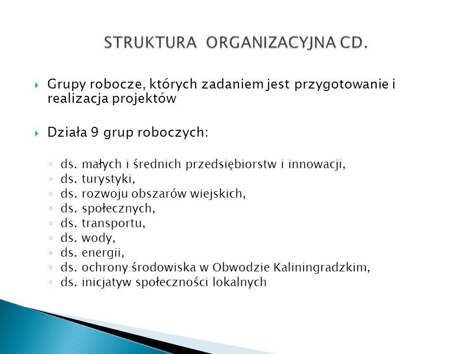 Grupy robocze, których zadaniem jest przygotowanie i realizacja projektów Działa 9 grup roboczych: ds. małych i średnich przedsiębiorstw i innowacji,
