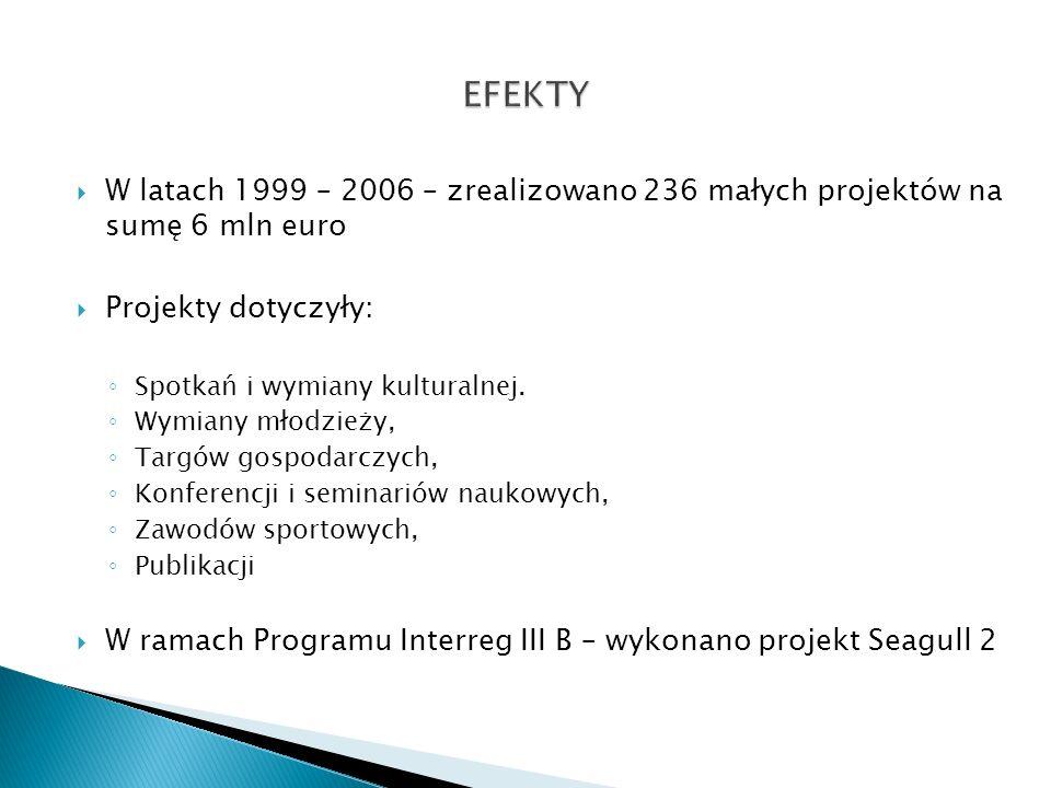 W latach 1999 – 2006 – zrealizowano 236 małych projektów na sumę 6 mln euro Projekty dotyczyły: Spotkań i wymiany kulturalnej. Wymiany młodzieży, Targ