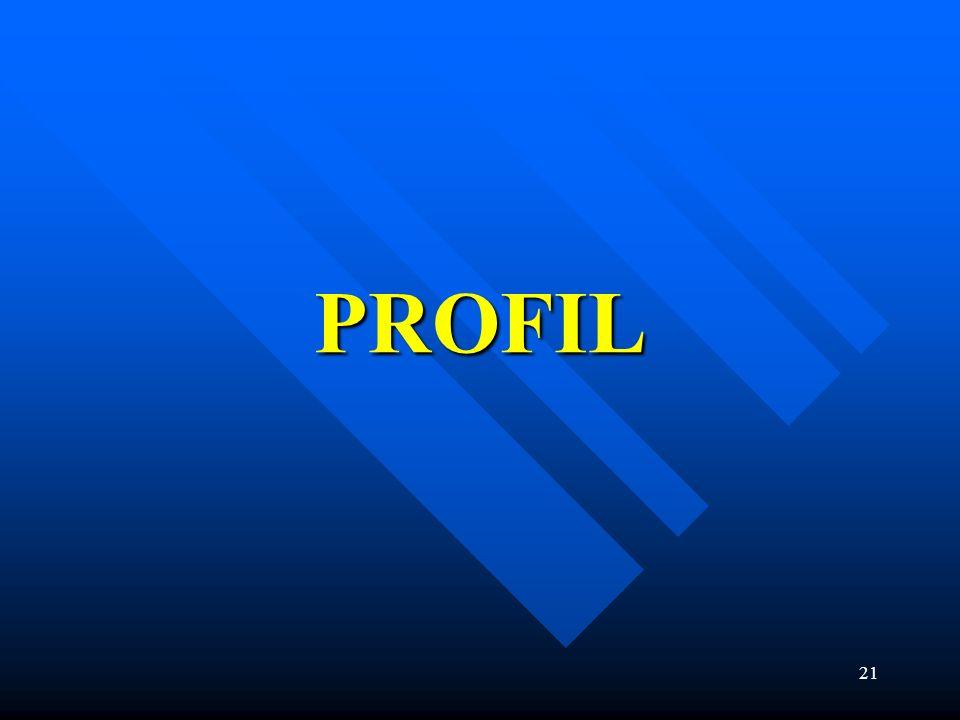 21 PROFIL