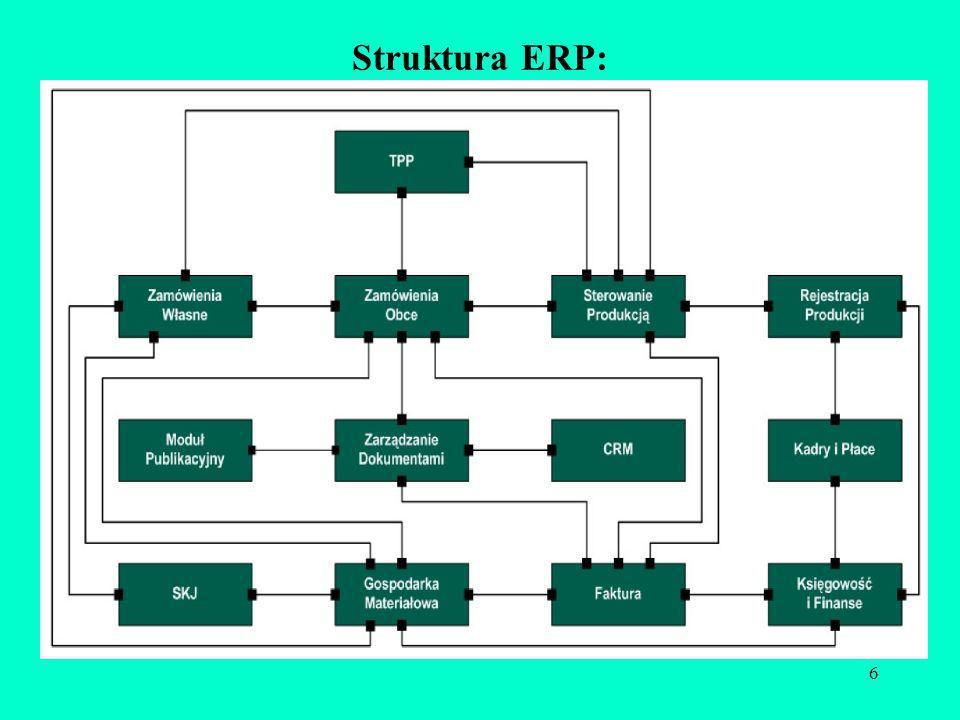 6 Struktura ERP: