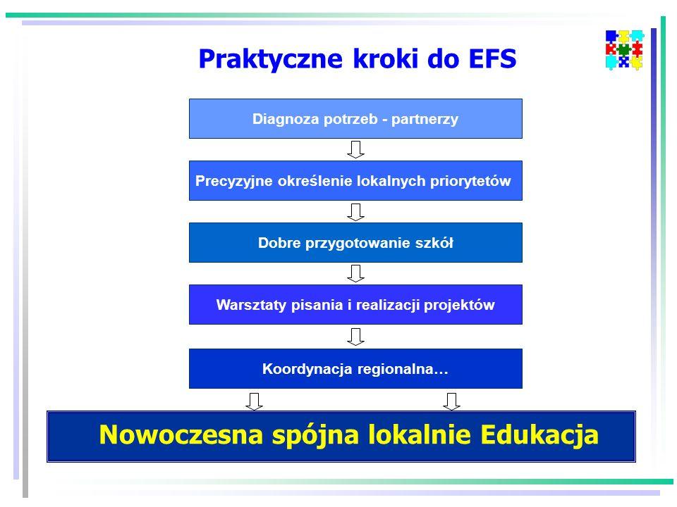 Precyzyjne określenie lokalnych priorytetów Diagnoza potrzeb - partnerzy Dobre przygotowanie szkół Warsztaty pisania i realizacji projektów Praktyczne kroki do EFS Koordynacja regionalna… Nowoczesna spójna lokalnie Edukacja