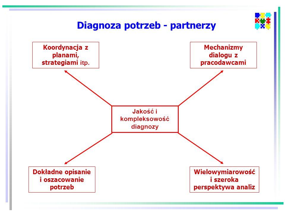 Jakość i kompleksowość diagnozy Koordynacja z planami, strategiami itp.