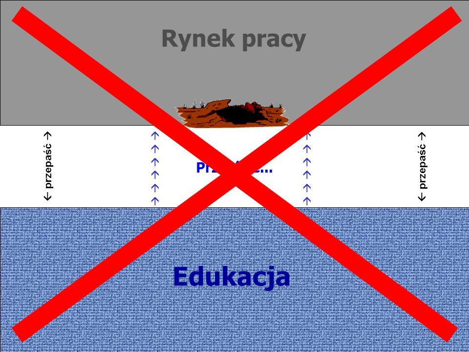 Rynek pracy Edukacja przepaść Przejście...