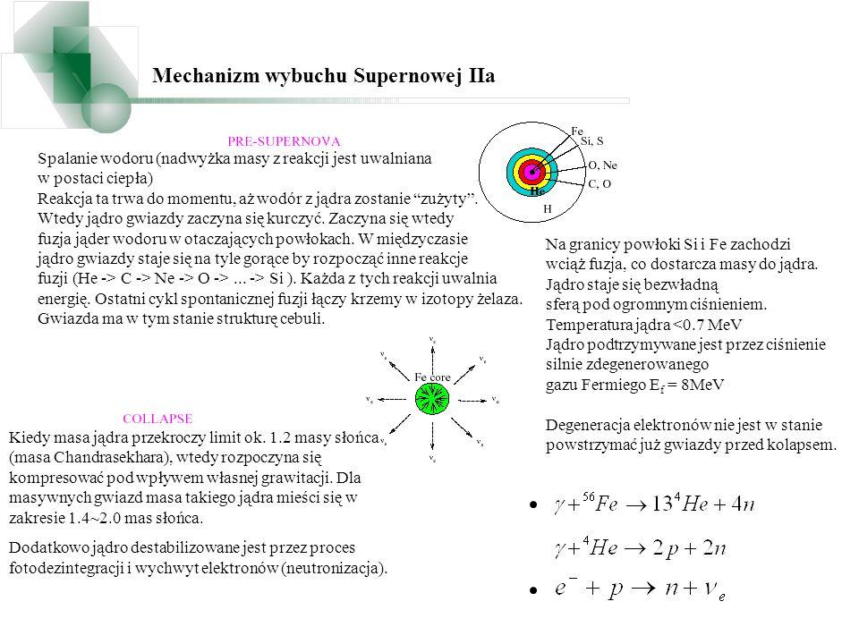 Proces kolapsu jest kontynuowany, neutrina mogą być emitowane z jądra do chwili kiedy zostanie osiągnięta gęstość.